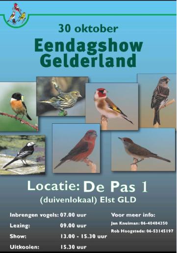 Eendagshow Gelderland